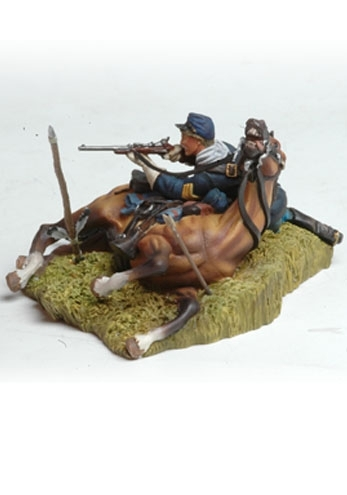 Shot down US Cavalryman and Horse