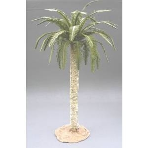Large date palm tree